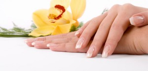 Few Schools offer Manicurist diplomas. We have some of the best educators for all three areas.